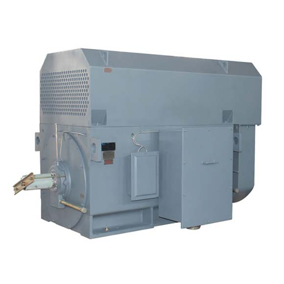 Mittelspannungsmotoren - Drehstrommotoren von AC-Motoren