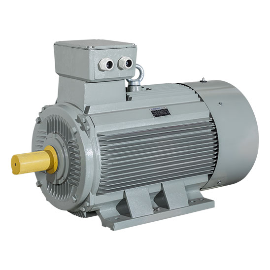 Niederspannungsmotoren - Drehstrommotoren von AC-Motoren